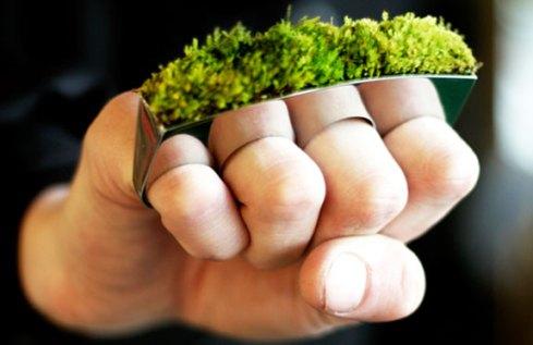 Grow Ring