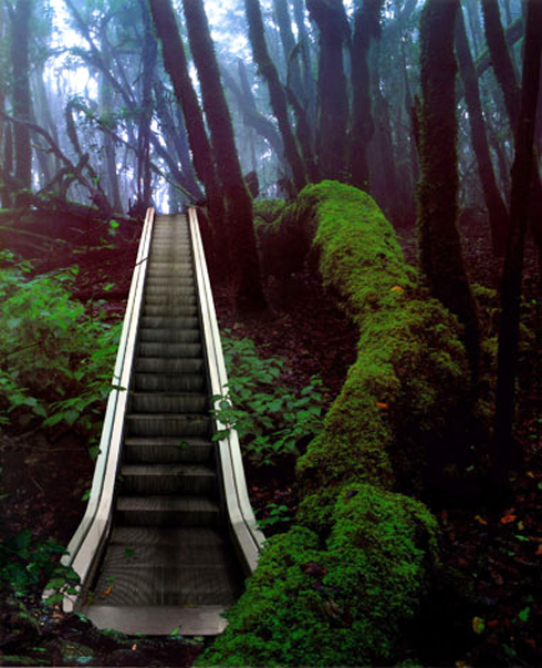 photography, video, surreal, spanish art, escalator in nature