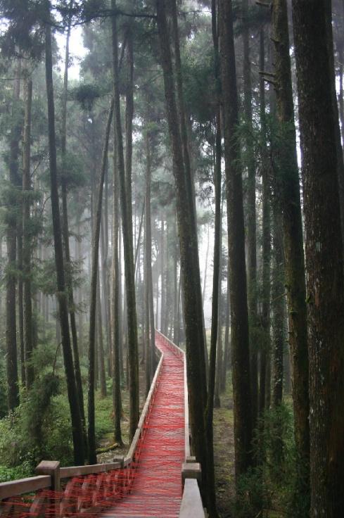 Art Installation in Taiwan, Ana Soler, Red thread on teak walkway, collabcubed