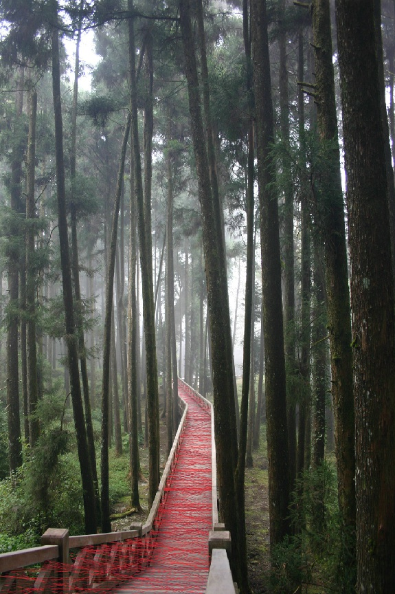 Art Installation in Taiwan, Ana Soler, Red thread on teak walkway, collabcubed