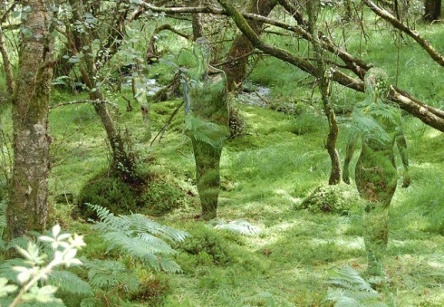 cool art installation in woodland walk at the David Marshall Lodge, Scotland, mirrors, predator