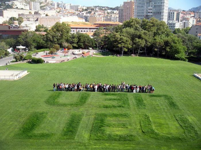 Typography landscapes, wordplay in grass, Lieu Lien, French art, Jean Daviot, type installation