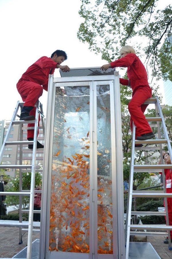 Phone Booth Aquariums Kingyobu