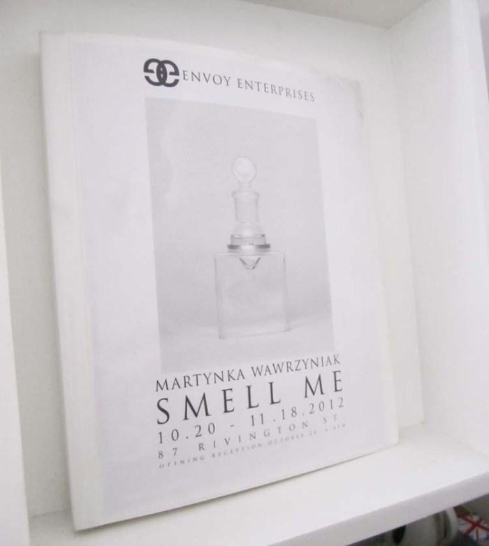 olfactory art, olfactory self portrait, smell chamber, sweat, tears, hair, Martynka wawrzyniak, Envoy Enterprises