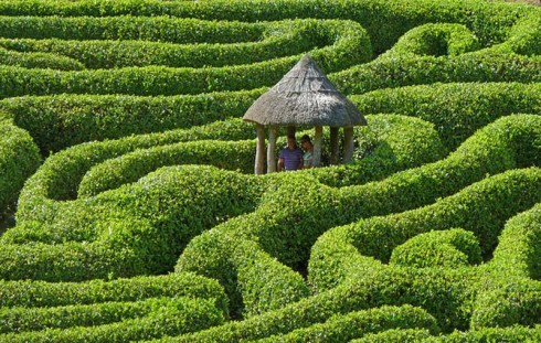 Amazing Mazes, Mazes from around the world, cool, corn mazes, hedges, landscapes