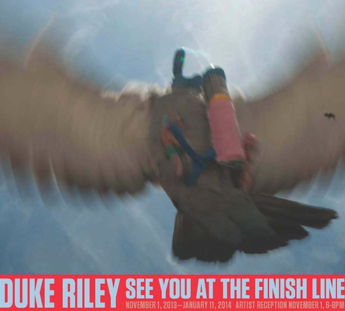 Duke Riley, Magnan Metz, Homing Pigeons fly to Cuba and bring back cigars; See You At The Finish Line