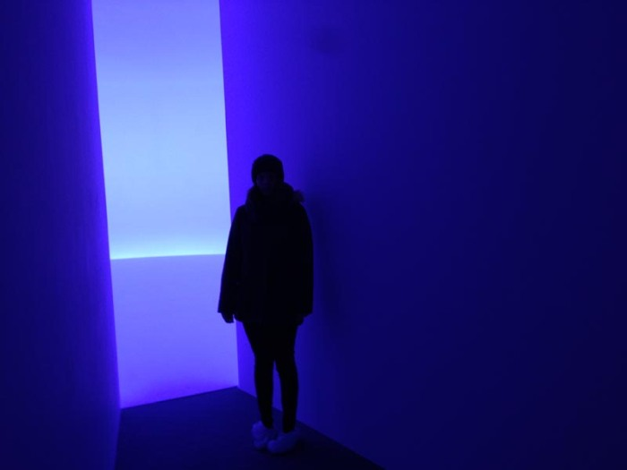 Doug Wheeler, cool light installation, rotational horizon, David Zwirner Gallery, nyc, contemporary art